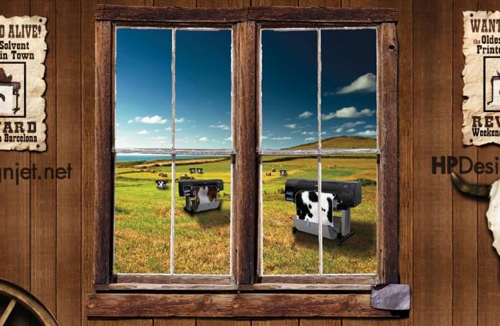 Creative Cows
